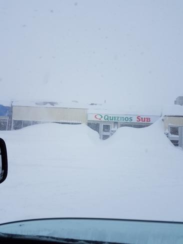 blizzard thompson