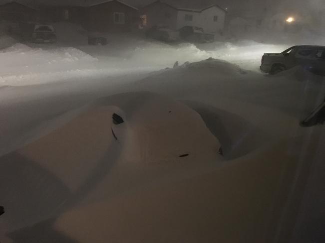 blizzard thompson1