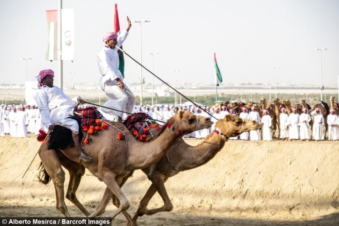 Arabia (4)