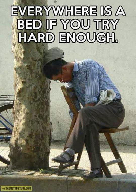 funny-man-sleeping-street-tree