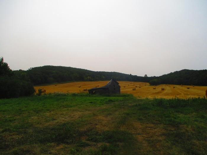 rural1 (2)