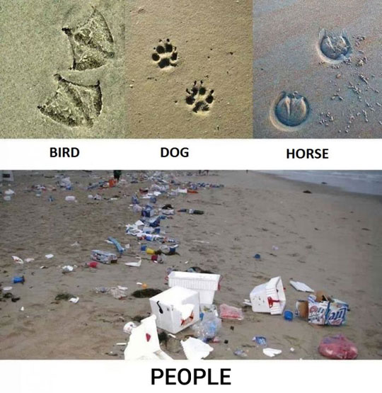 cool-people-footprints-animals-trash