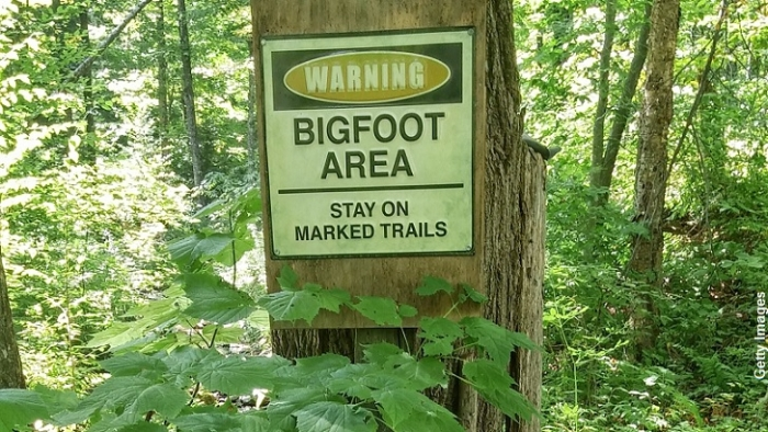 Bigfoot-Warning